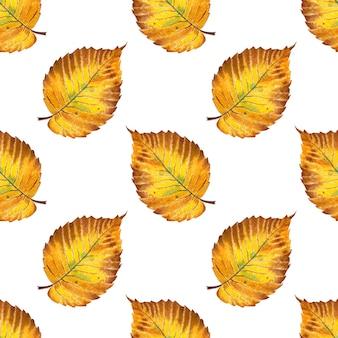 Akwarela ilustracja wzór jesienny żółty liść wiązu bez szwu powtarzający się nadruk opadania liści