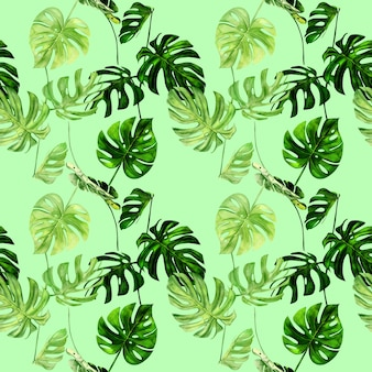 Akwarela ilustracja wzór tropikalnych liści monstera.