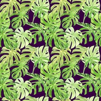 Akwarela ilustracja wzór tropikalnych liści monstera