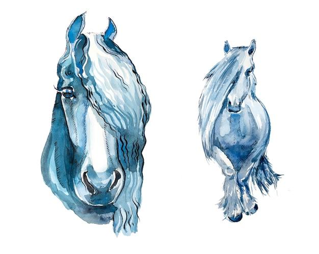 Akwarela konie zestaw na białym tle na białym tle.