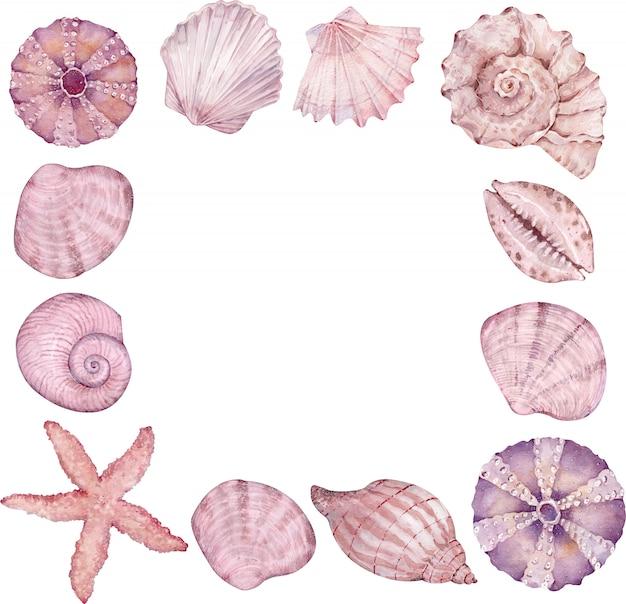 Akwarela kwadratowy wieniec z muszelek, rozgwiazdy. rama życia oceanu. kolor różowy i beżowy.