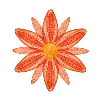 Akwarela kwiat pomarańczy