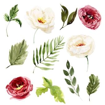 Akwarela kwiatowy wiosenne i letnie elementy ilustracji