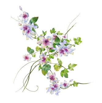 Akwarela liść i kwiat, na białym tle