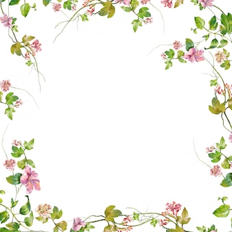 Akwarela liść i kwiat na bielu