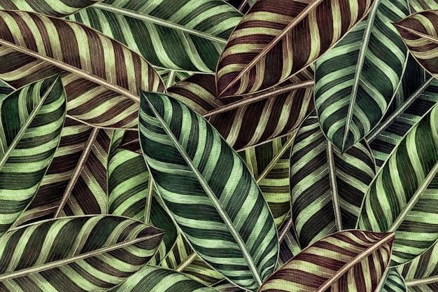 Akwarela malarstwo kolorowe tropikalne zielone liście wzór.