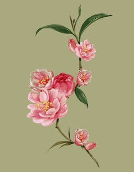 Akwarela malarstwo liści i ilustracji kwiatów