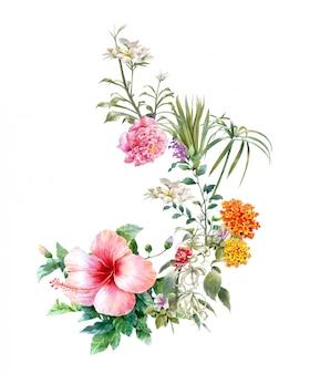Akwarela malarstwo liści i kwiatów, na białym tle