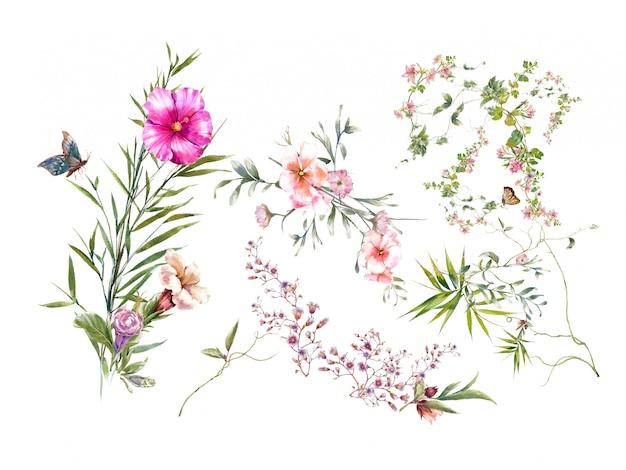 Akwarela Malarstwo Liści I Kwiatów, Na Białym Tle Premium Zdjęcia
