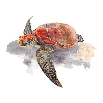 Akwarela malarstwo żółwia morskiego