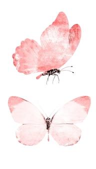 Akwarela motyle na białym tle na białym tle.
