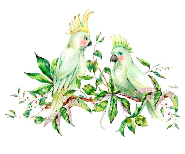 Akwarela para kartkę z życzeniami lato biały papuga
