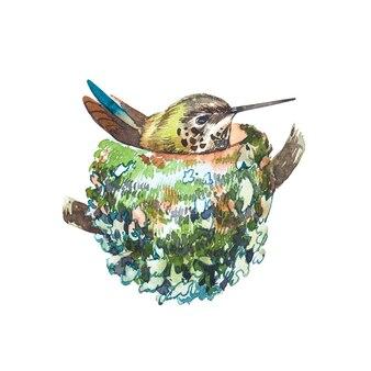 Akwarela ptak w gnieździe. ręcznie rysować ilustracje akwareli na białym tle. kolekcja wielkanocna.