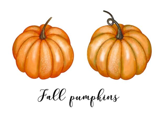Akwarela pumpkins clipart zestaw jesiennych zbiorów