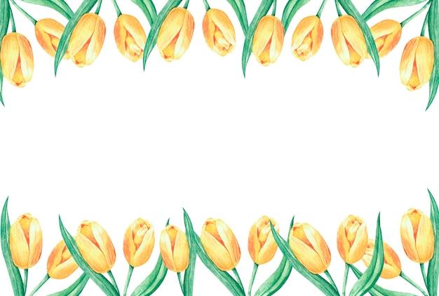 Akwarela Rama Z Tło Ramki Duże żółte Tulipany Kwiaty Premium Zdjęcia