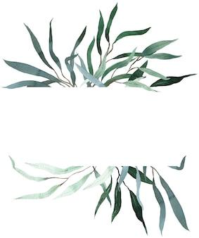 Akwarela rama z zielonych liści eukaliptusa wierzby. szablon zieleni lato. rama kwiatowy zaproszenie ślubne.