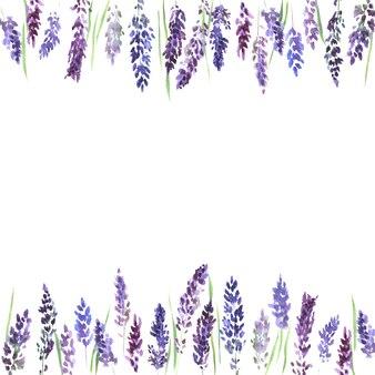 Akwarela ramki z kwiatami lawendy kwiaty lawendy bzu
