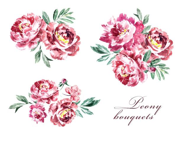 Akwarela ręcznie malowane piwonie marsala i zieleni clipartów zestaw na białym tle. projekt kwiatów bordeaux.