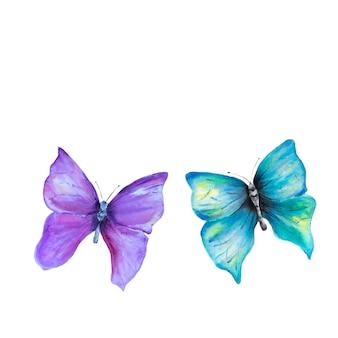 Akwarela ręcznie rysowane motyle