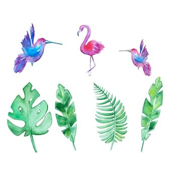 Akwarela ręcznie rysowane tropikalne liście i ptaki
