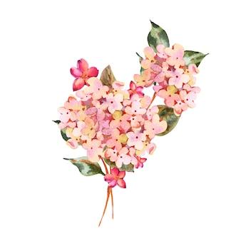 Akwarela różowa kwitnąca hortensja z małymi polnymi kwiatami.
