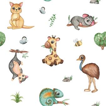 Akwarela rysunek australijskich zwierząt