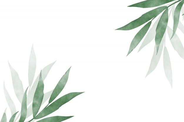 Akwarela, rysunek gałęzi z liśćmi na białym tle. projekt szablonu karty z pozdrowieniami.