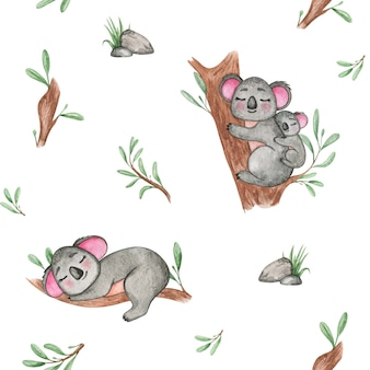 Akwarela rysunek koala