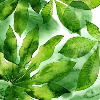 Akwarela streszczenie tło z tropikalnymi liśćmi. kwiatowe elementy w kolorze zielonym.