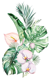Akwarela tropikalne kwiaty i liście bukiet