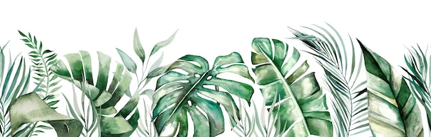 Akwarela tropikalne liście seamles granicy na białym tle