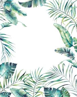 Akwarela tropikalnej flory okładka. ręcznie rysowane projekt okładki z egzotycznych liści i gałęzi na białym tle. palma, liście bananowca, rośliny mostera