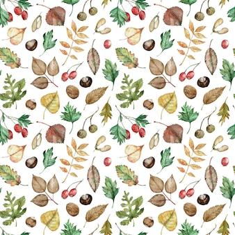Akwarela wzór jesiennych liści i jagód