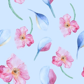Akwarela wzór z różowe maki
