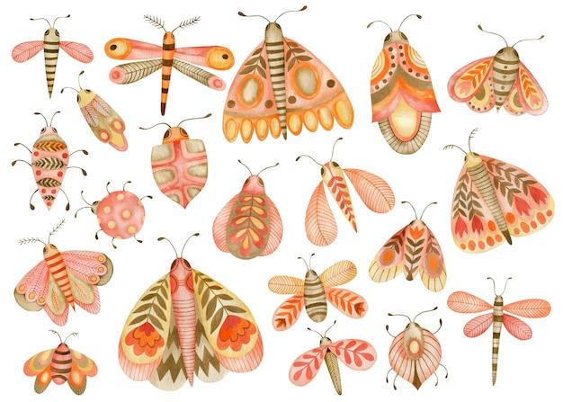 Akwarela zestaw ilustracji motyli i chrząszczy w stylu boho