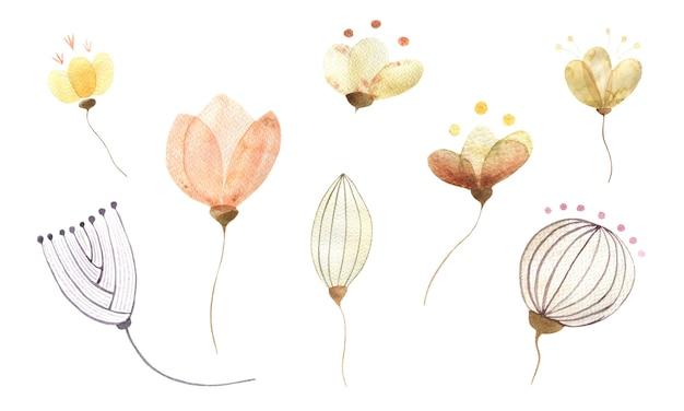Akwarela zestaw różnych abstrakcyjnych złotych kwiatów i pąków na białym tle elementów