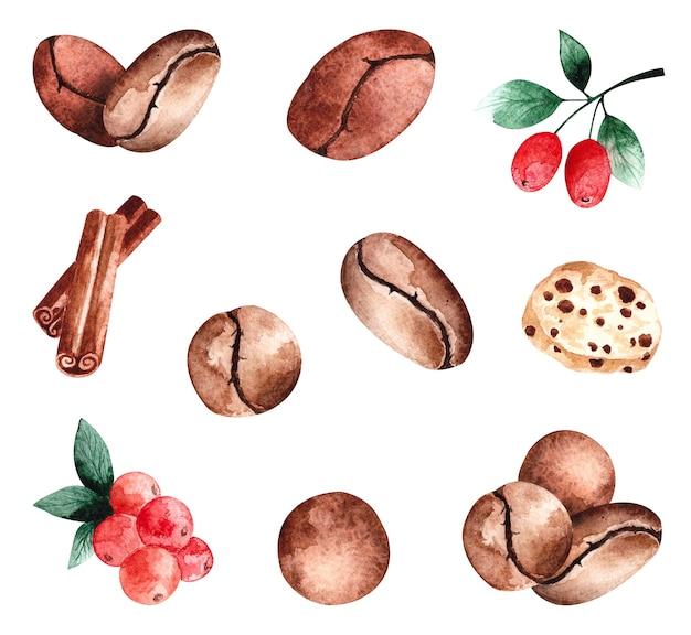 Akwarela ziarna kawy, jagody kawy i cynamon, poszczególne elementy na białej powierzchni.