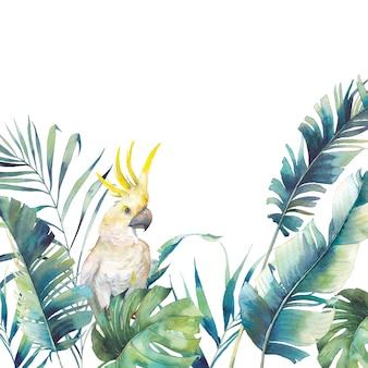 Akwarela zieleni i duża żółta rama kakadu.