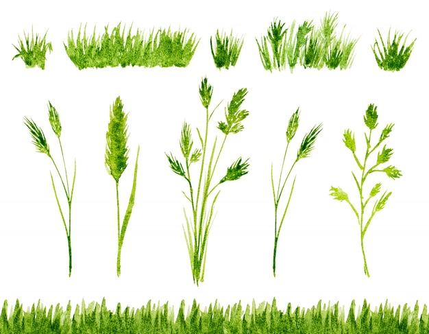 Akwarela zielona trawa na biały na białym tle