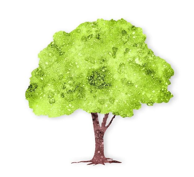 Akwarela zielone drzewo na białym tle