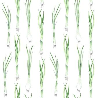 Akwarela zielony wzór cebuli