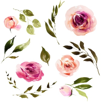 Akwarela zima różowe kwiaty liście i brunche zestaw