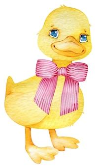 Akwarela żółte kaczątko z radosną buźką i różową kokardką. ptak farmy na białym tle