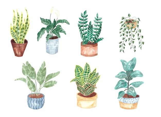 Akwarele malowane zielone rośliny w doniczkach