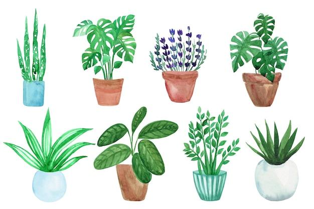 Akwarele ręcznie malowane zielone rośliny w doniczkach