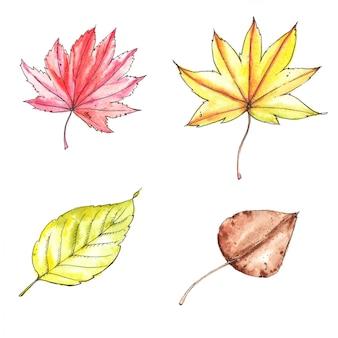 Akwareli i atramentu ręka rysująca ilustracja kolorowi jaskrawi jesień liście odizolowywający na białym tle