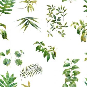 Akwareli ilustracja liść, bezszwowy wzór na bielu