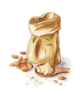 Akwareli ilustracja migdałowa mąka odizolowywająca na bielu