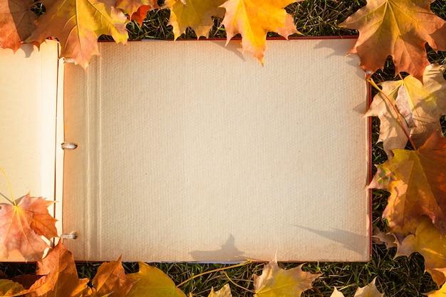 Album fotograficzny z jesiennymi żółtymi liśćmi w parku.