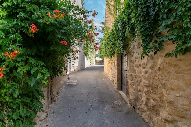 Aleja wioski lourmarin w luberon provence
